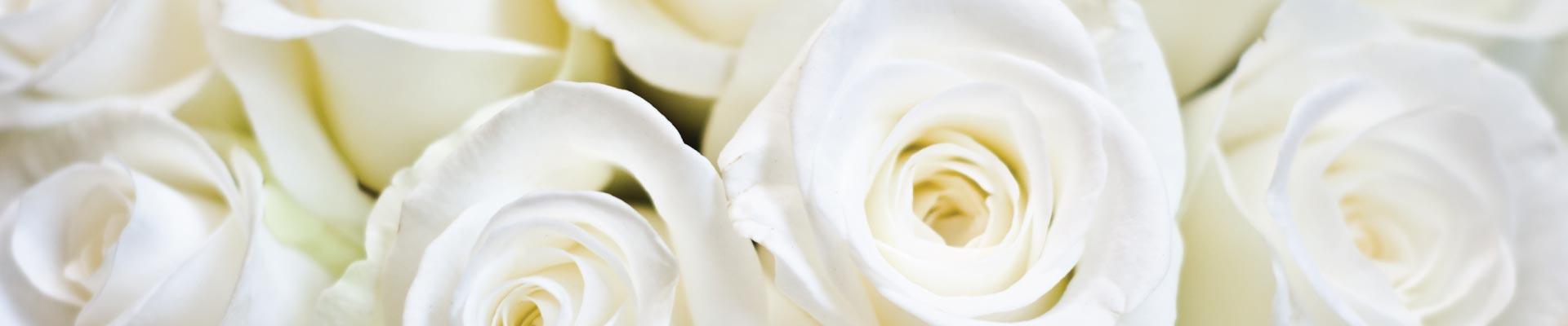 blossom-boutique-floral-banner-3