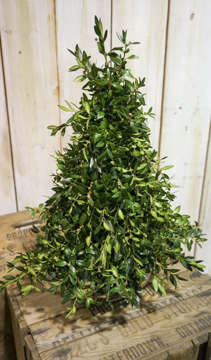 Blossom-Boutique-Newmarket-Christmas-Display-Photos-2015-52